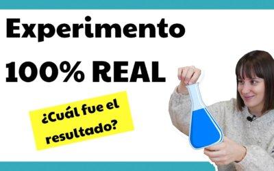 Cómo configurar un experimento en Google Ads – ¡Experimento 100% real!